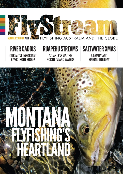 FlyStream 1 cover